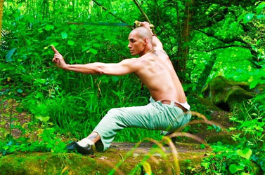 Tai Chi Workshop: Yin in Action... the Foregone Power of Courtesy