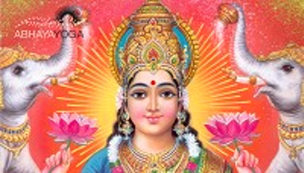 Lakshmi and the New York Woman